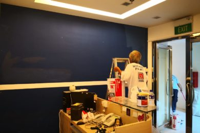 House/Office Painting Services